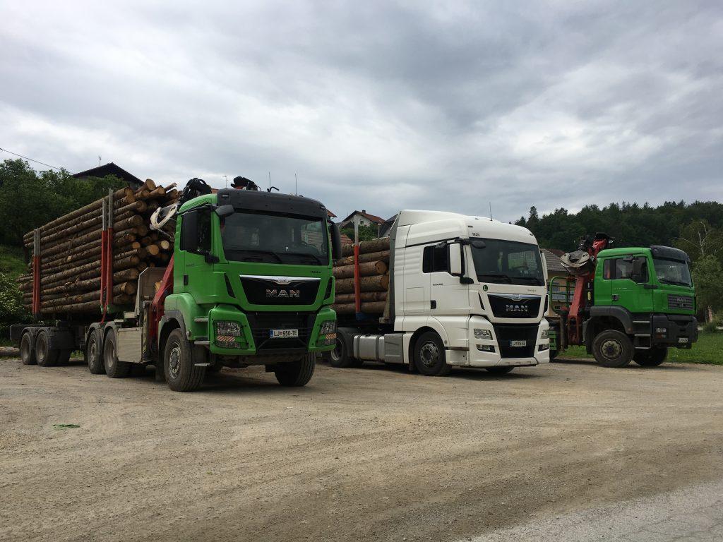 Prevoz in odkup lesa